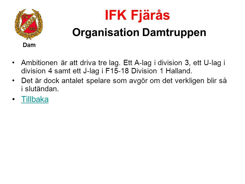 IFK Fjärås Organisation Damtruppen