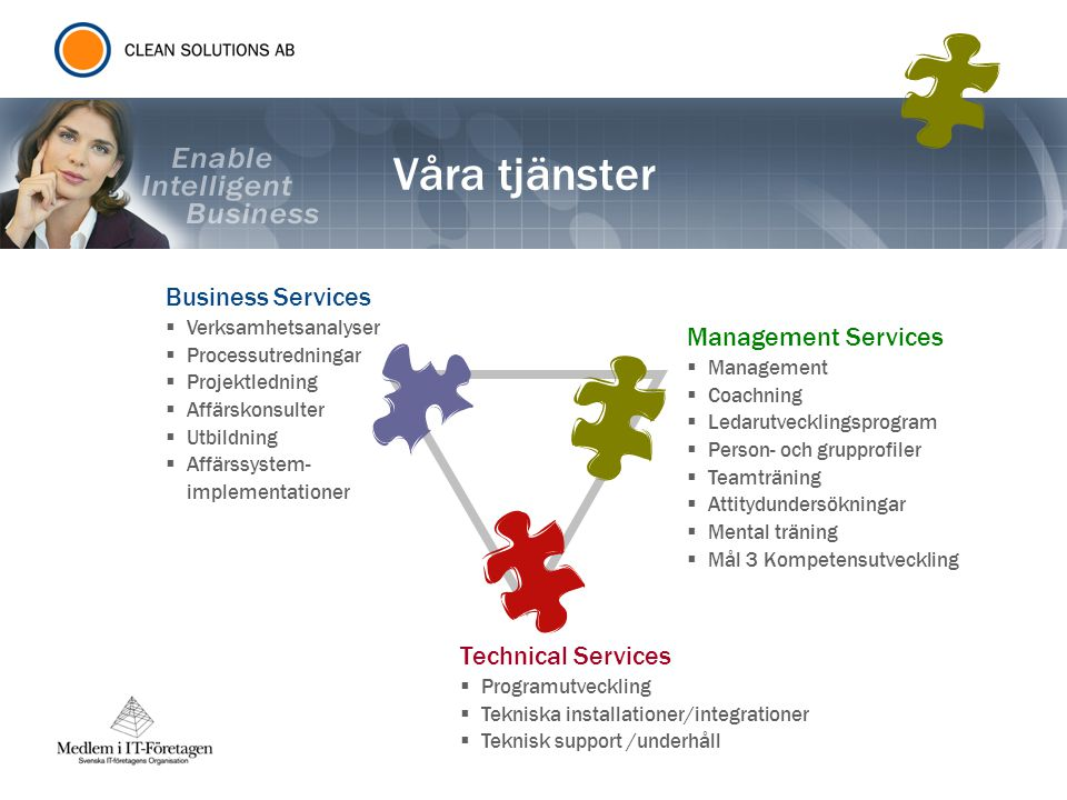Våra tjänster Business Services Management Services Technical Services