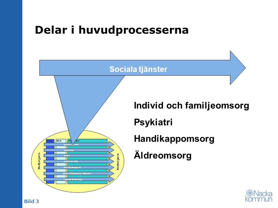 Delar i huvudprocesserna