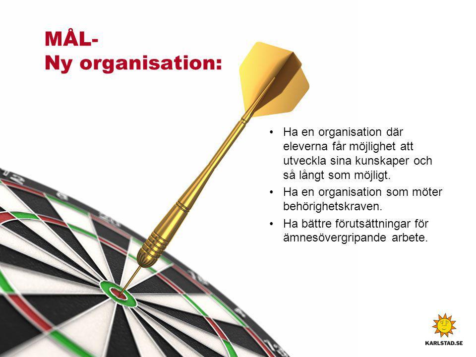 MÅL- Ny organisation: Ha en organisation där eleverna får möjlighet att utveckla sina kunskaper och så långt som möjligt.
