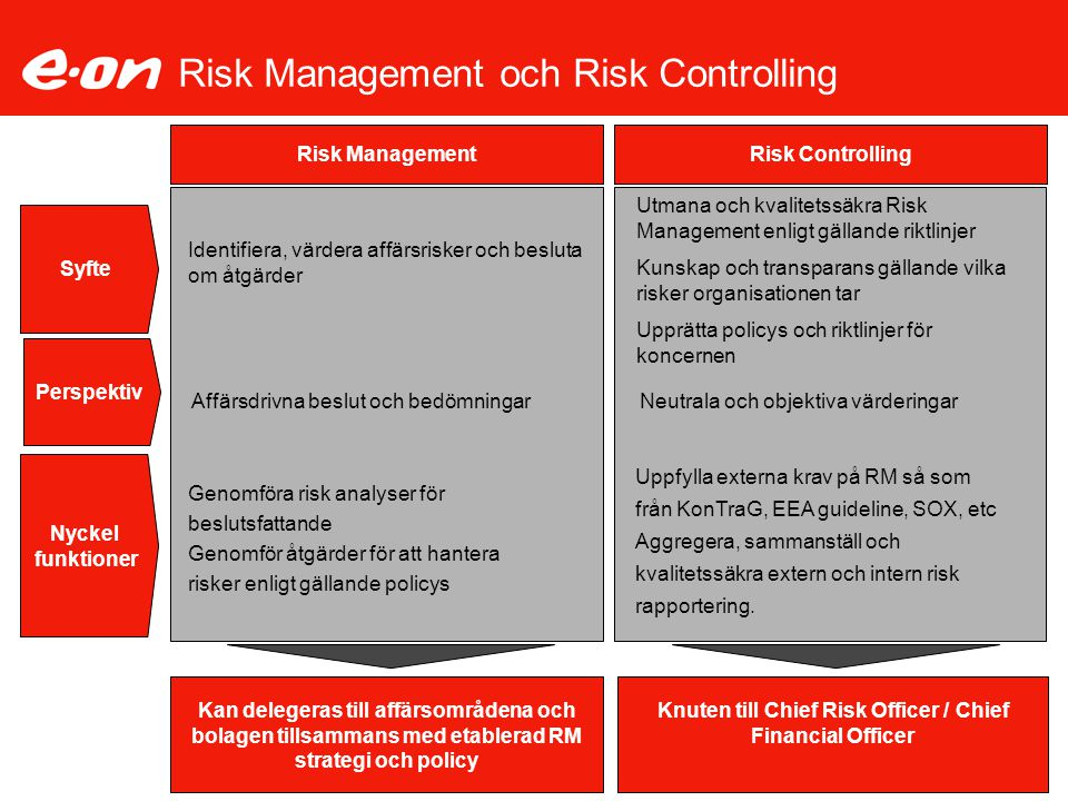 Risk Management och Risk Controlling