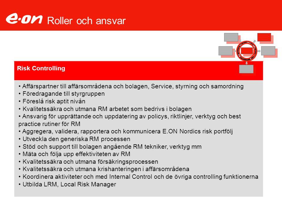 Roller och ansvar Risk Controlling