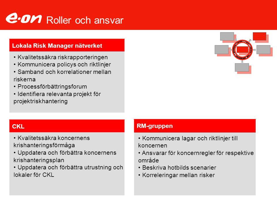Roller och ansvar Lokala Risk Manager nätverket