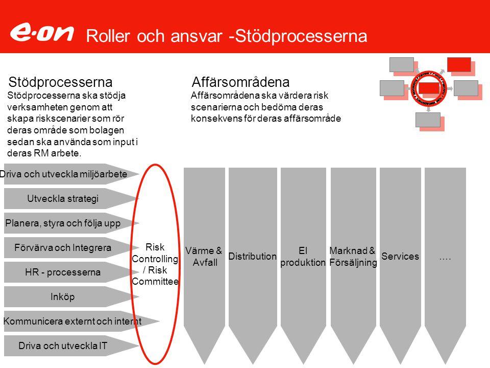 Roller och ansvar -Stödprocesserna