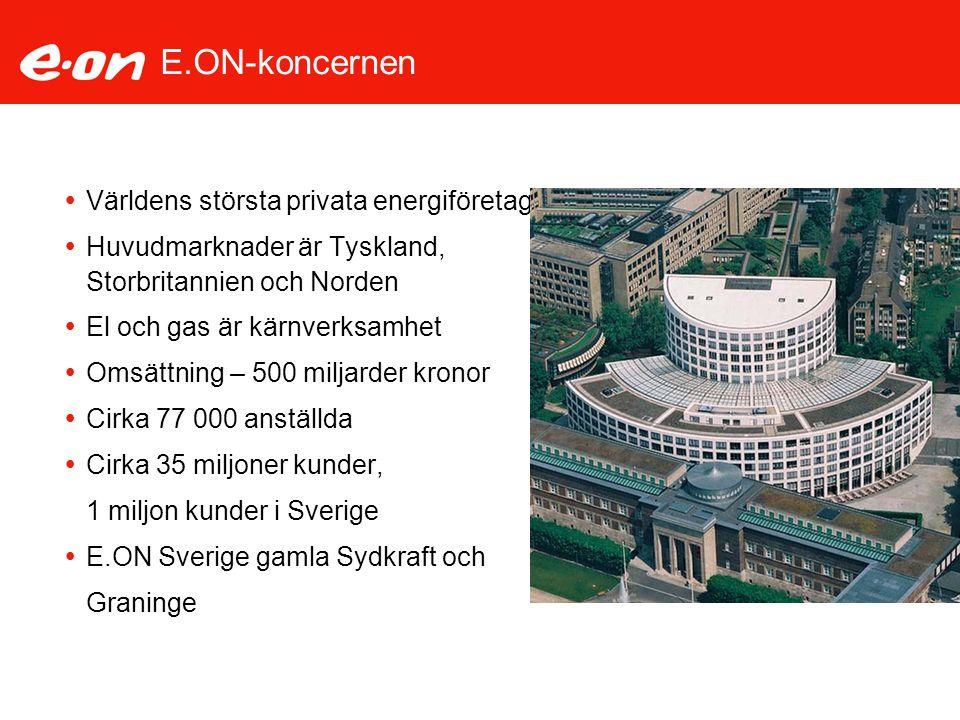 E.ON-koncernen Världens största privata energiföretag
