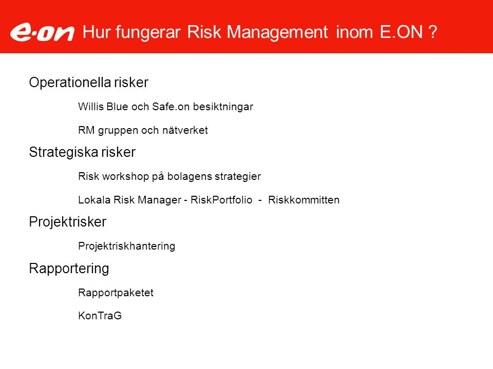 Hur fungerar Risk Management inom E.ON