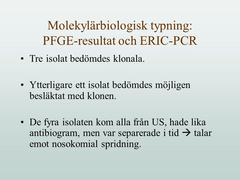 Molekylärbiologisk typning: PFGE-resultat och ERIC-PCR