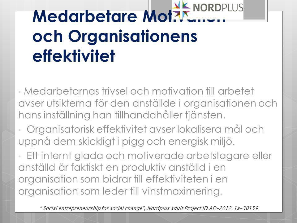 Medarbetare Motivation och Organisationens effektivitet