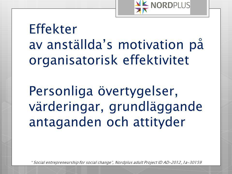 Effekter av anställda's motivation på organisatorisk effektivitet Personliga övertygelser, värderingar, grundläggande antaganden och attityder