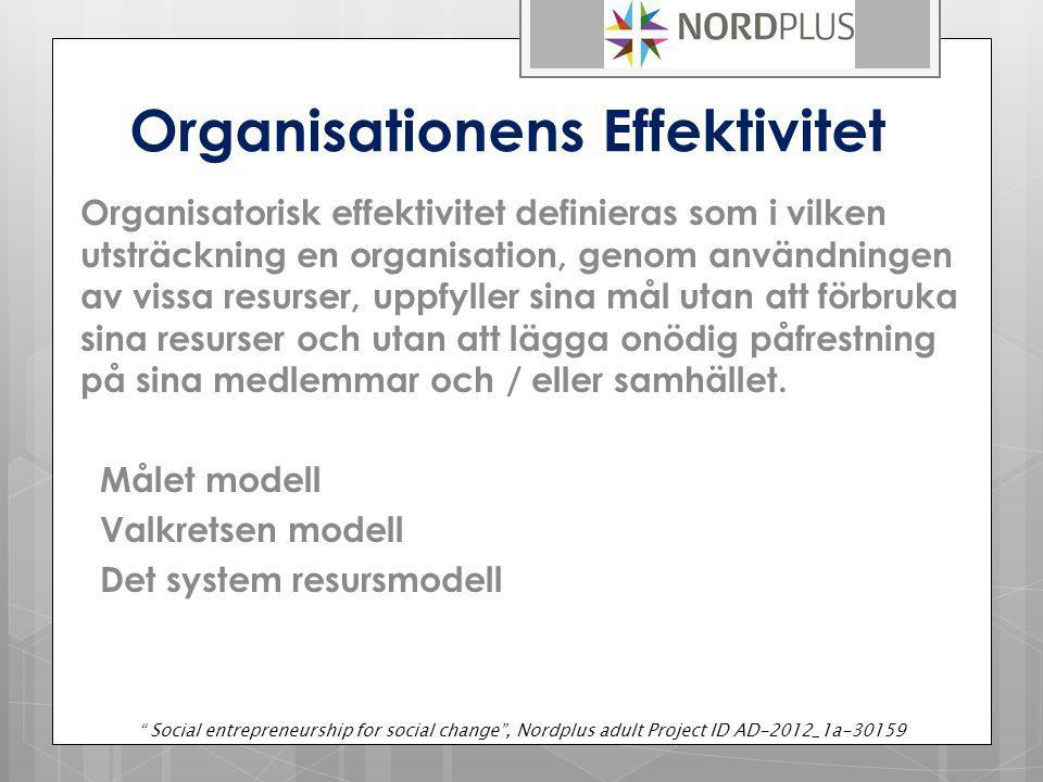 Organisationens Effektivitet