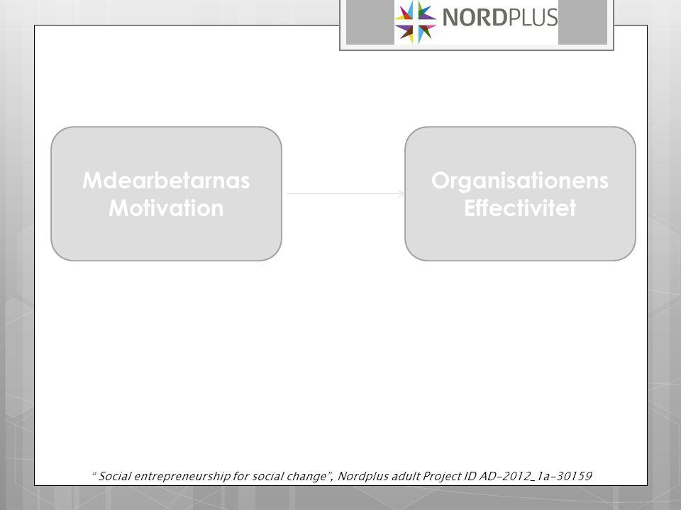 Mdearbetarnas Motivation Organisationens Effectivitet