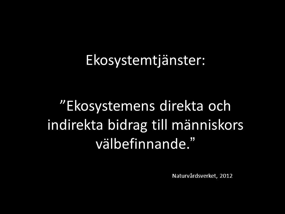 Ekosystemtjänster: Ekosystemens direkta och indirekta bidrag till människors välbefinnande. Naturvårdsverket, 2012.