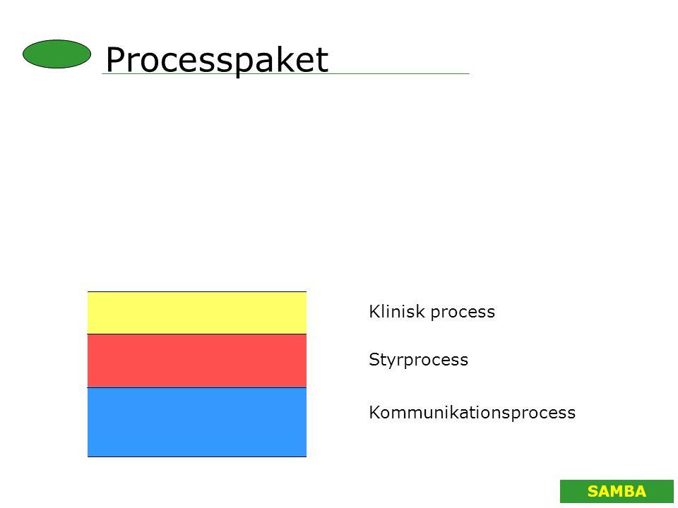 Processpaket Klinisk process Styrprocess Kommunikationsprocess