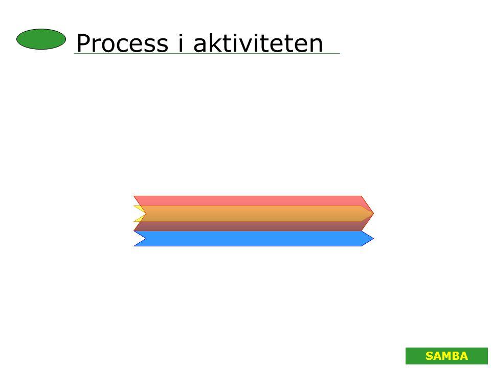 Process i aktiviteten