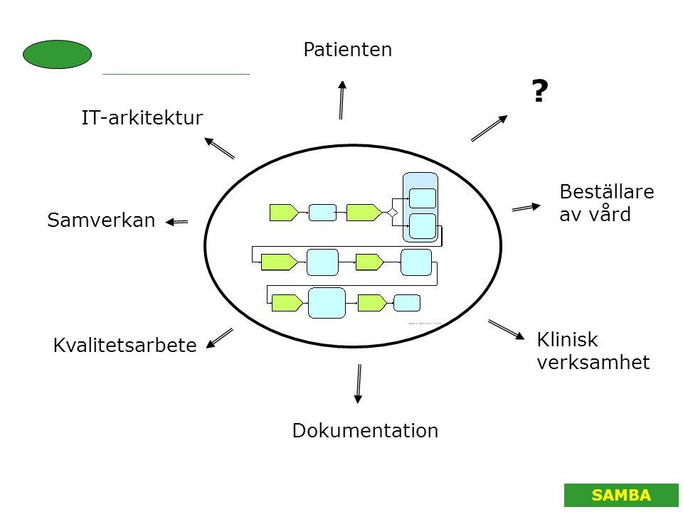 Patienten IT-arkitektur Beställare av vård Samverkan Klinisk