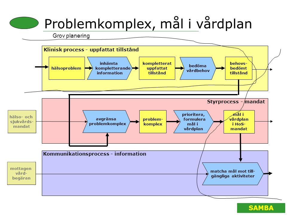 Problemkomplex, mål i vårdplan
