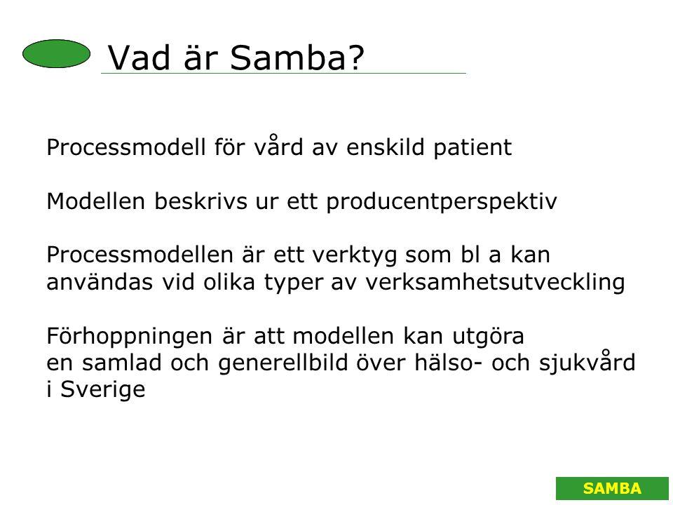 Vad är Samba Processmodell för vård av enskild patient