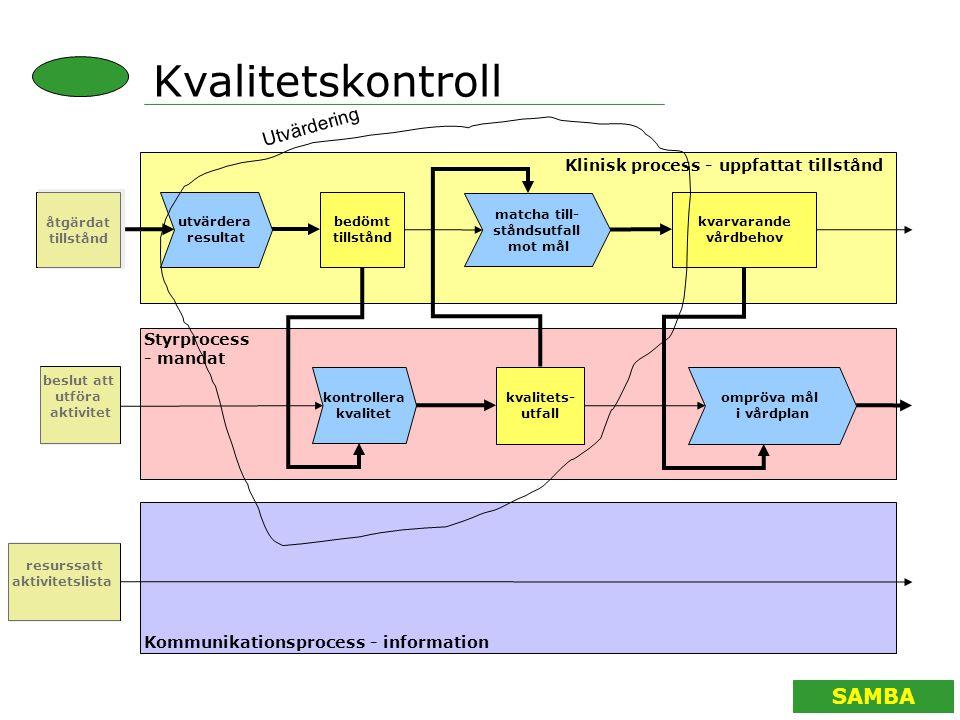 Kvalitetskontroll Utvärdering Klinisk process - uppfattat tillstånd