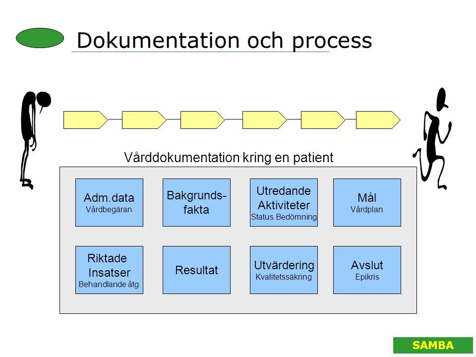 Dokumentation och process