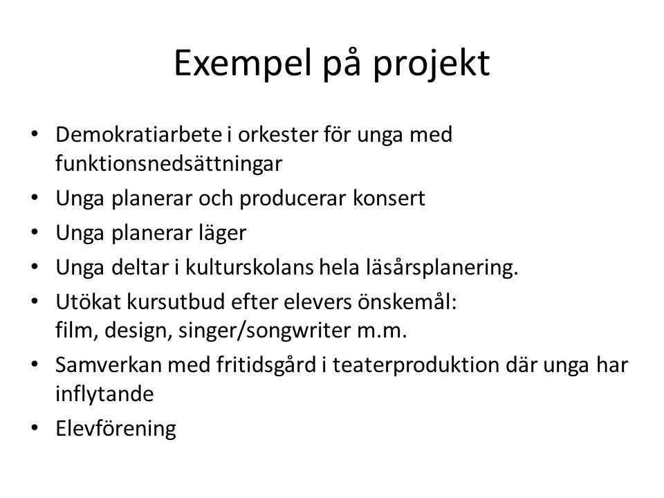 Exempel på projekt Demokratiarbete i orkester för unga med funktionsnedsättningar. Unga planerar och producerar konsert.