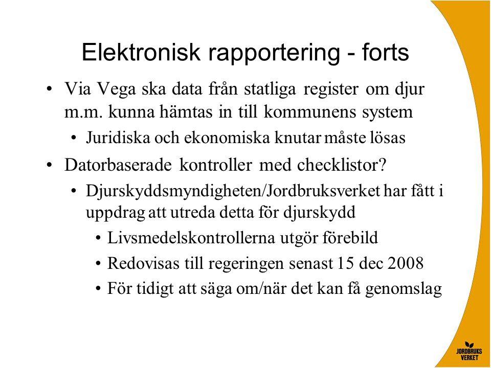 Elektronisk rapportering - forts