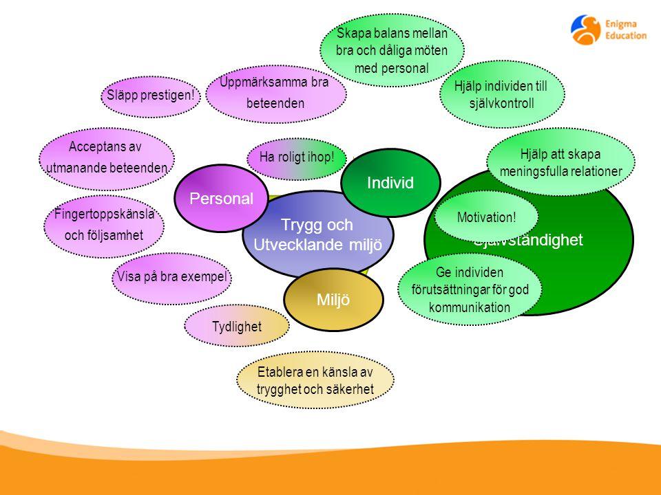 Individ Personal Självständighet Trygg och Utvecklande miljö Miljö