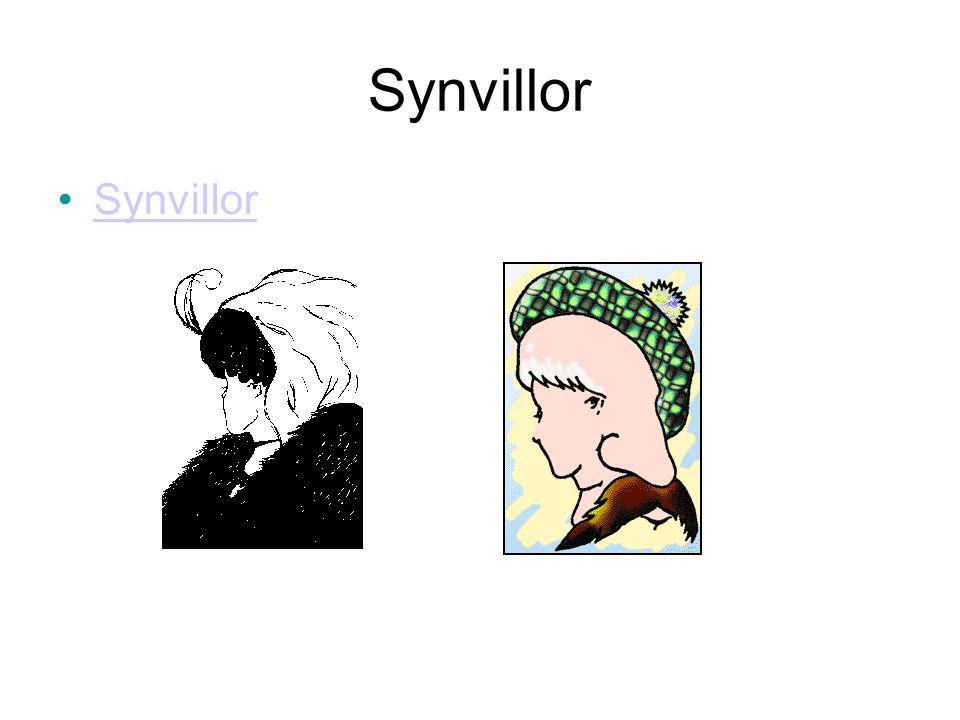 Synvillor Synvillor