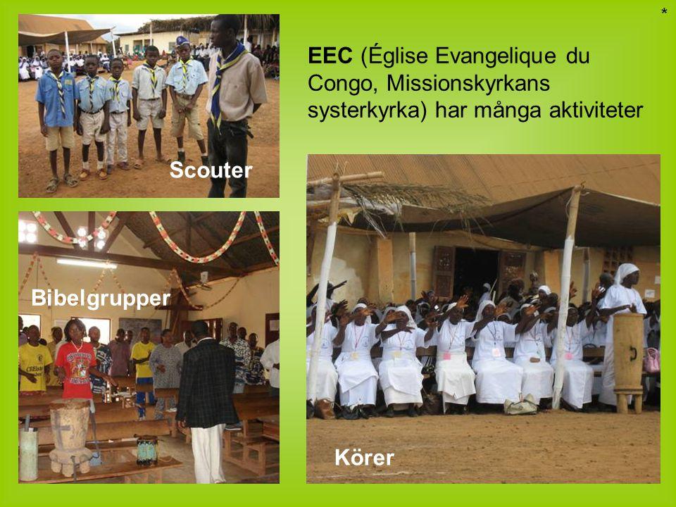 * EEC (Église Evangelique du Congo, Missionskyrkans systerkyrka) har många aktiviteter. Scouter. Bibelgrupper.