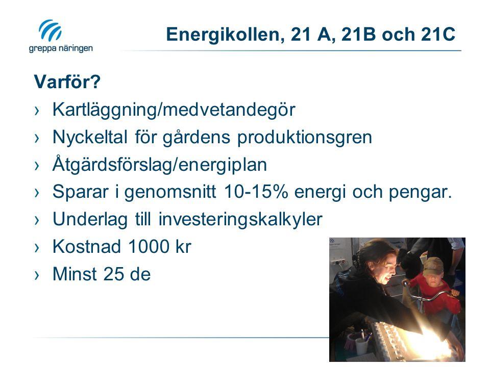 Energikollen, 21 A, 21B och 21C Varför Kartläggning/medvetandegör. Nyckeltal för gårdens produktionsgren.