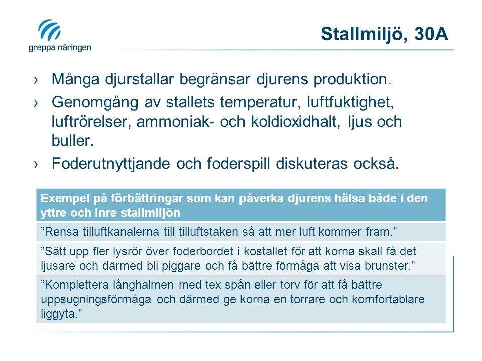 Stallmiljö, 30A Många djurstallar begränsar djurens produktion.