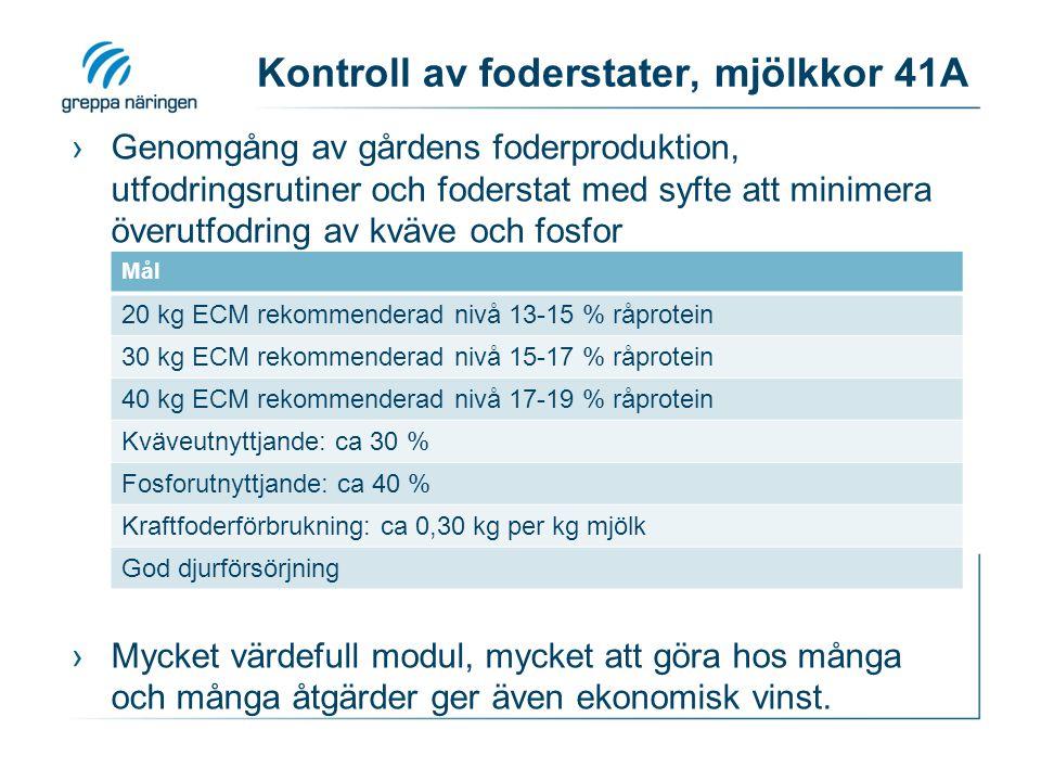 Kontroll av foderstater, mjölkkor 41A