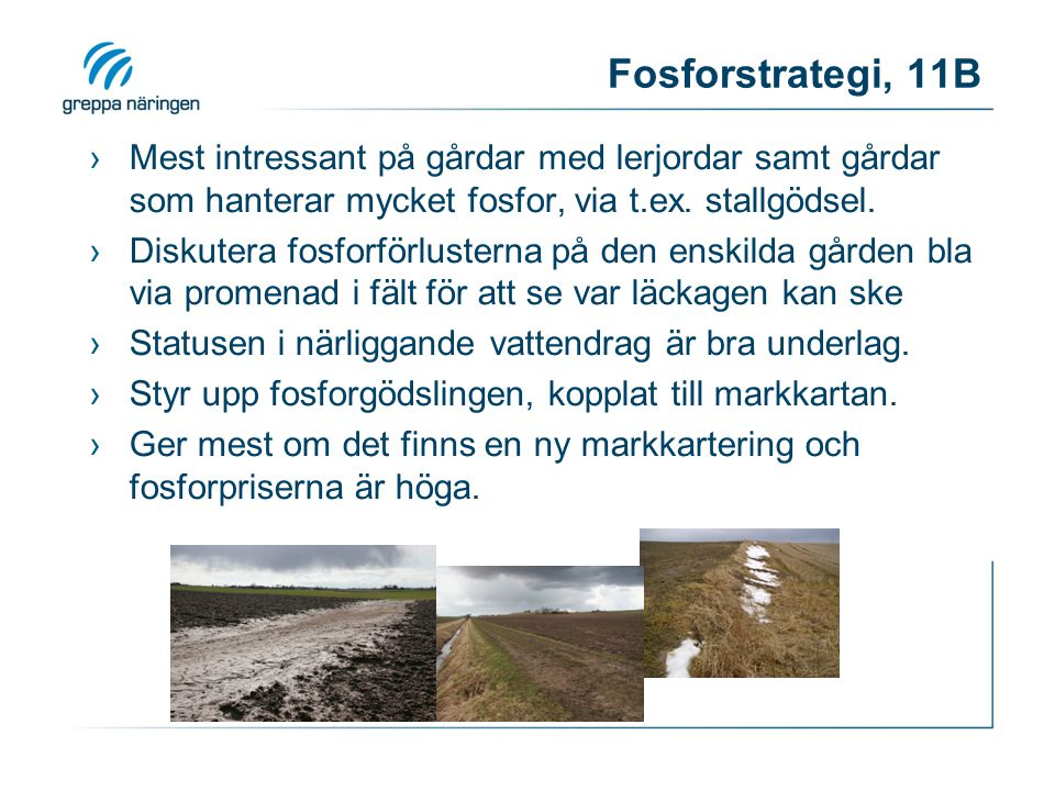 Fosforstrategi, 11B Mest intressant på gårdar med lerjordar samt gårdar som hanterar mycket fosfor, via t.ex. stallgödsel.