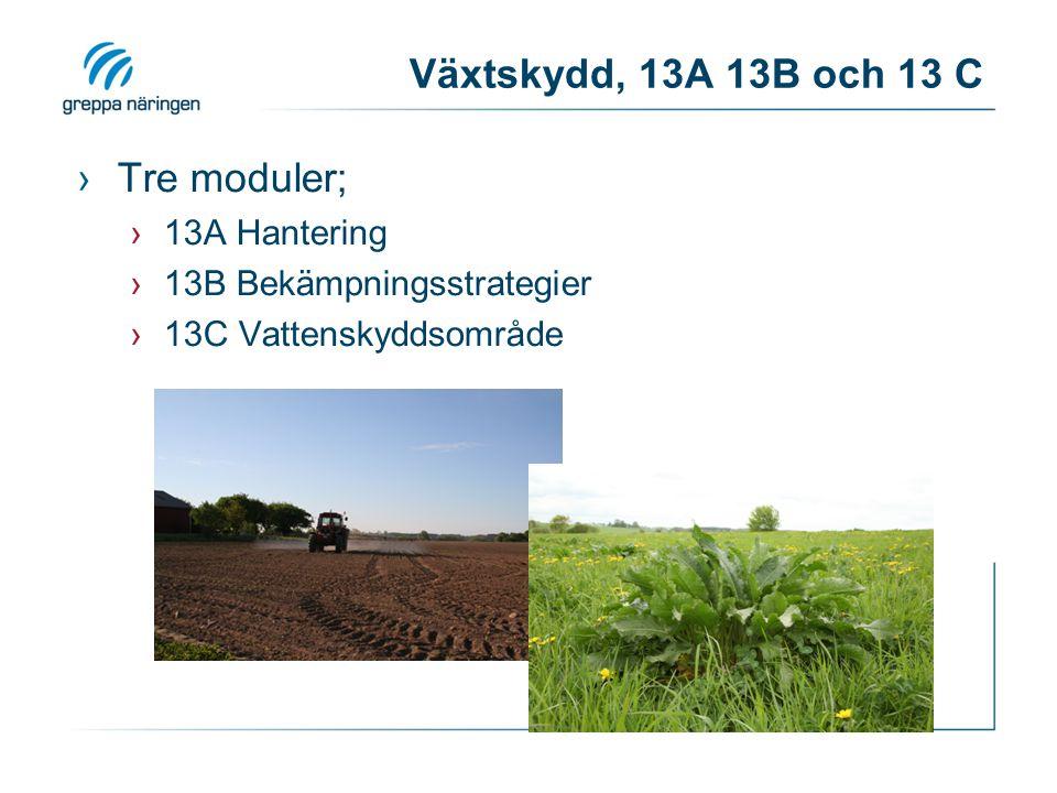 Växtskydd, 13A 13B och 13 C Tre moduler; 13A Hantering