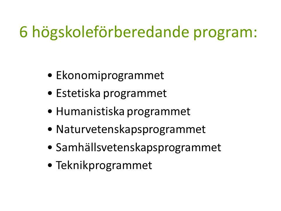 6 högskoleförberedande program: