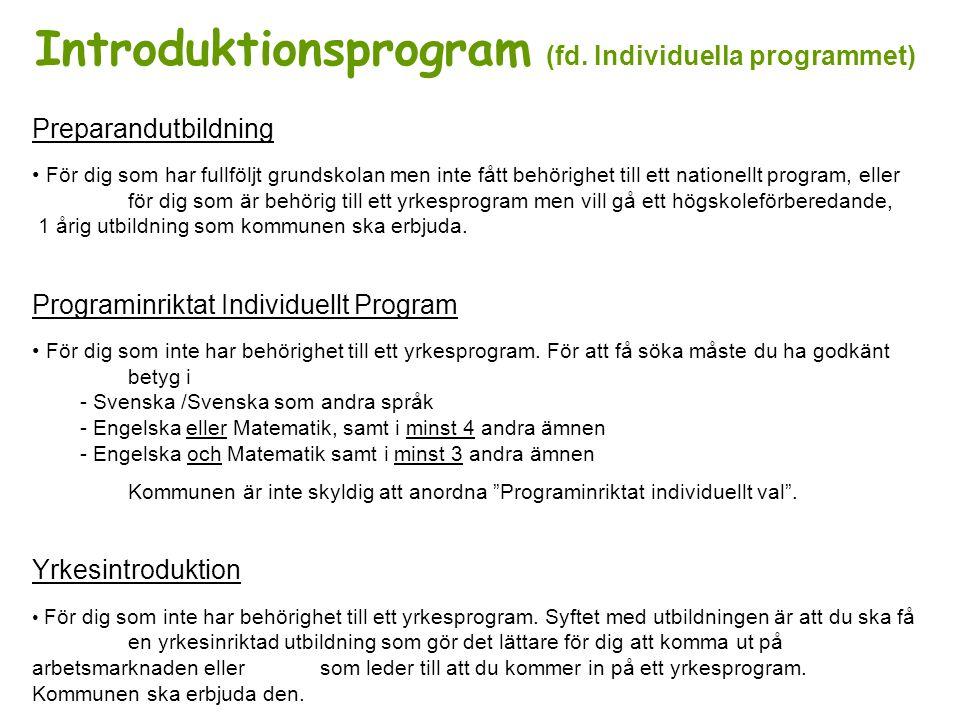 Introduktionsprogram (fd. Individuella programmet)