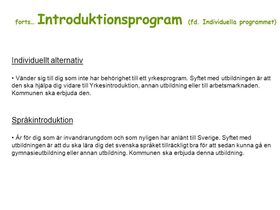 forts… Introduktionsprogram (fd. Individuella programmet)