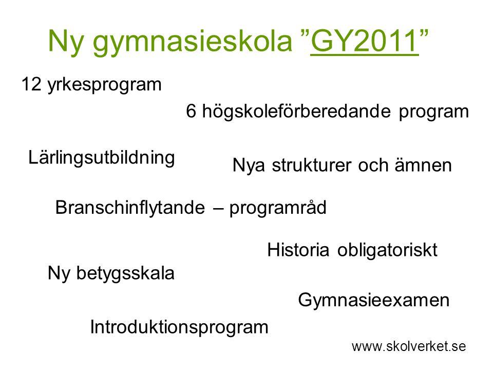 Ny gymnasieskola GY2011 12 yrkesprogram