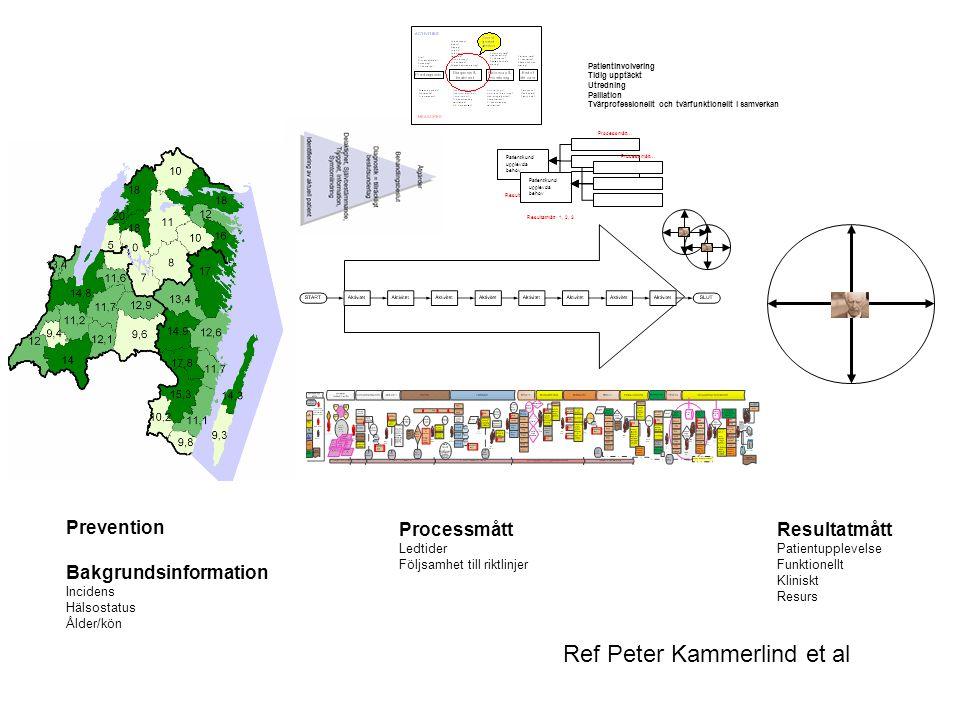 Ref Peter Kammerlind et al