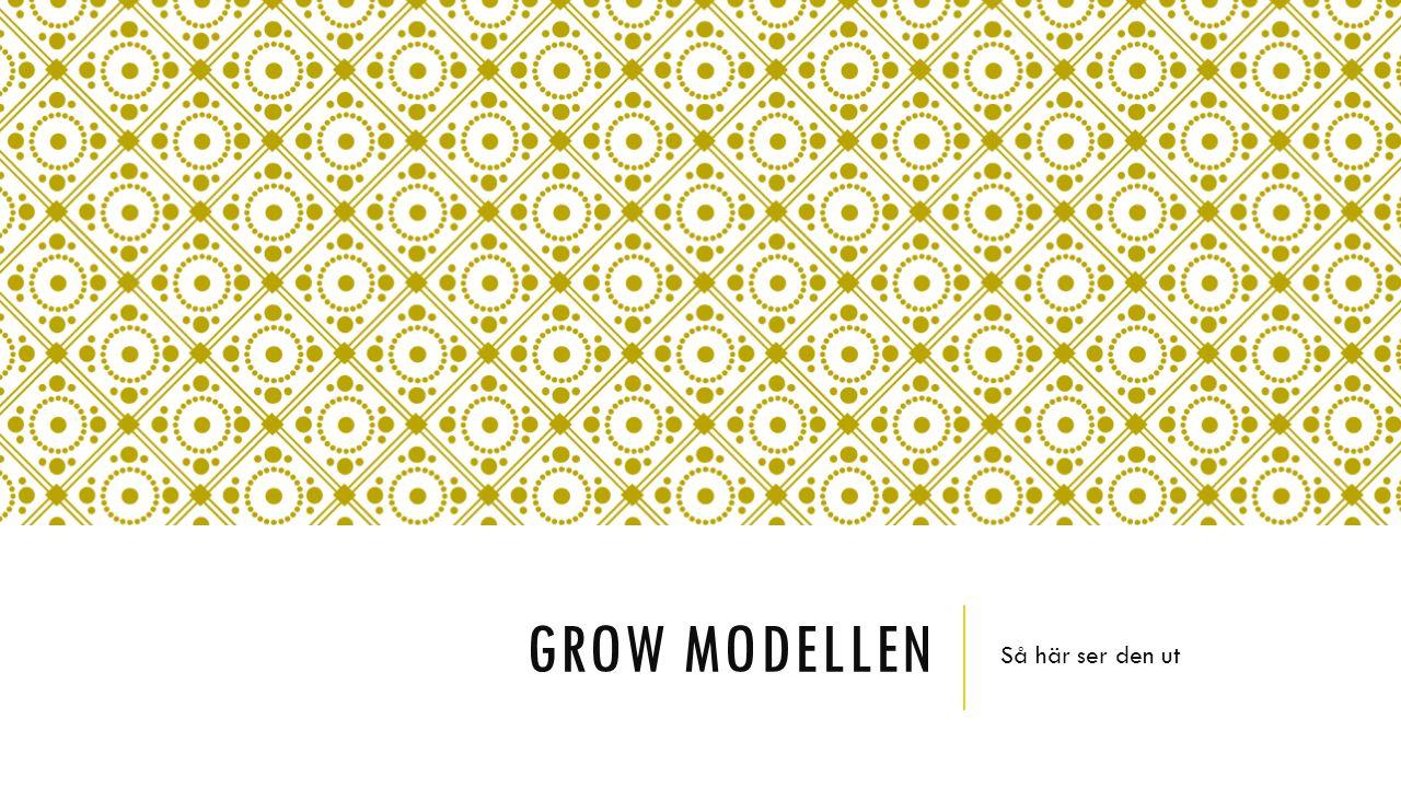 Grow modellen Så här ser den ut