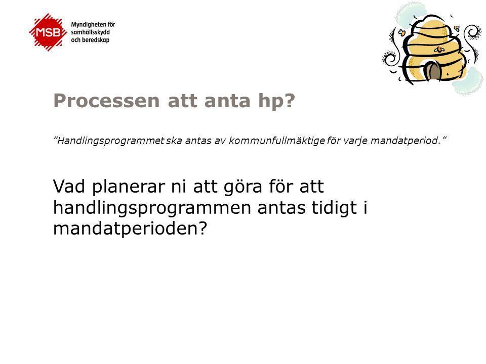 Processen att anta hp Handlingsprogrammet ska antas av kommunfullmäktige för varje mandatperiod.