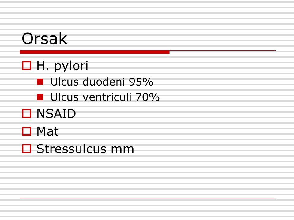 Orsak H. pylori NSAID Mat Stressulcus mm Ulcus duodeni 95%