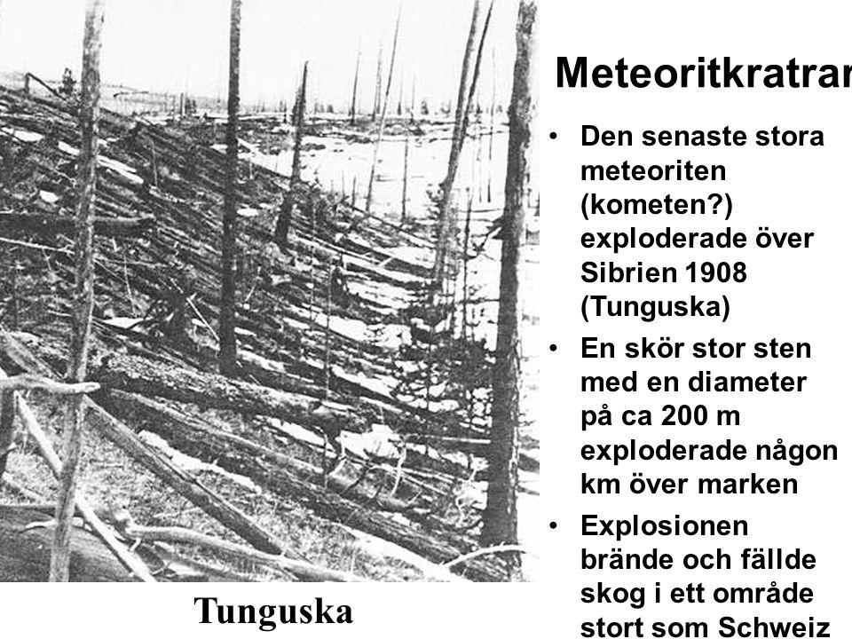 Meteoritkratrar Tunguska