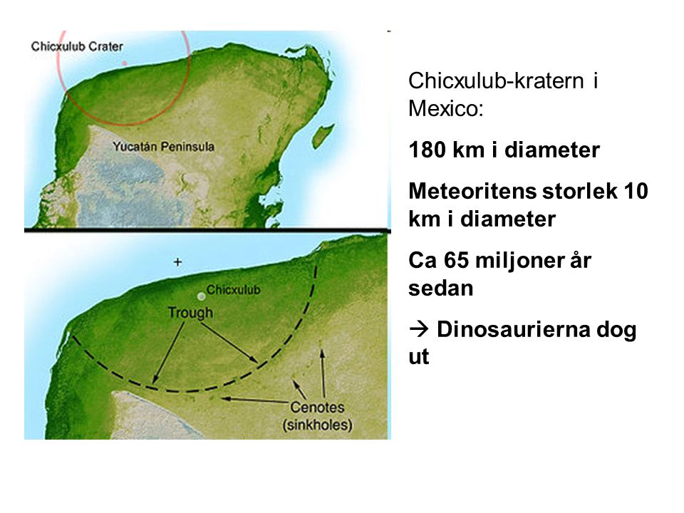 Chicxulub-kratern i Mexico: