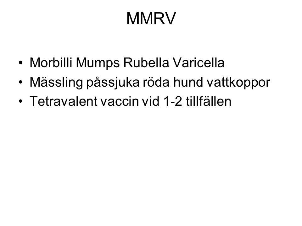 MMRV Morbilli Mumps Rubella Varicella