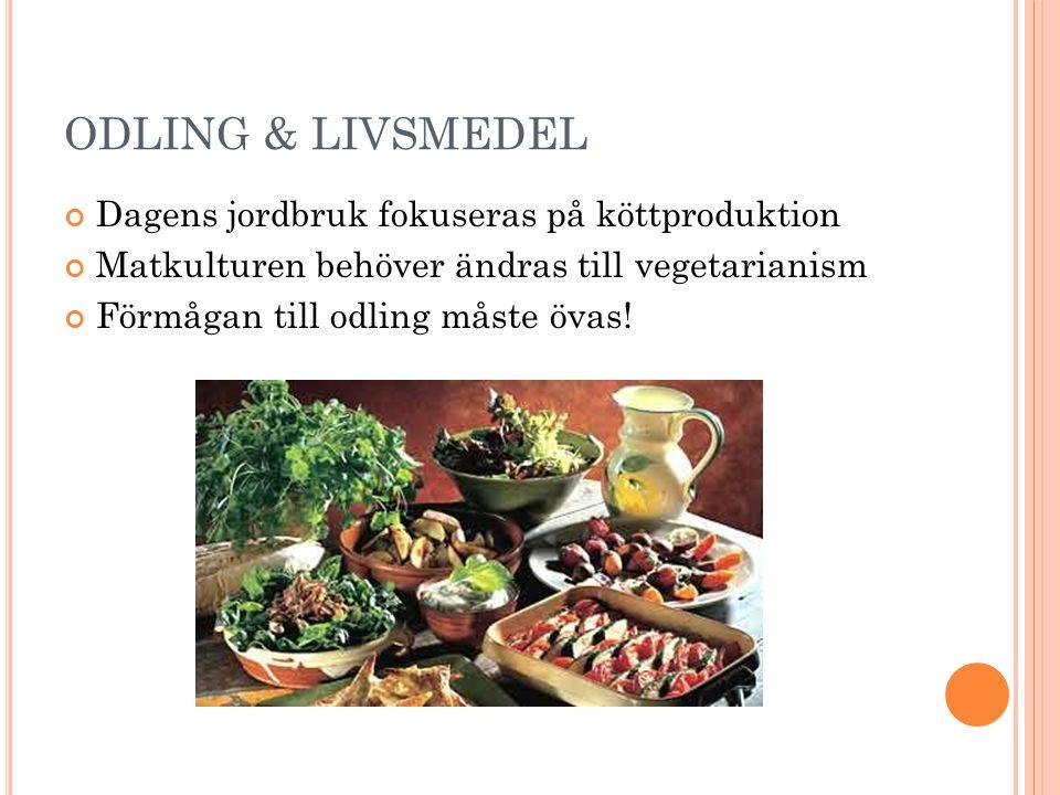 ODLING & LIVSMEDEL Dagens jordbruk fokuseras på köttproduktion
