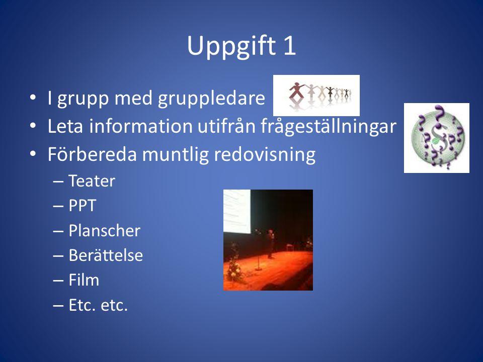 Uppgift 1 I grupp med gruppledare