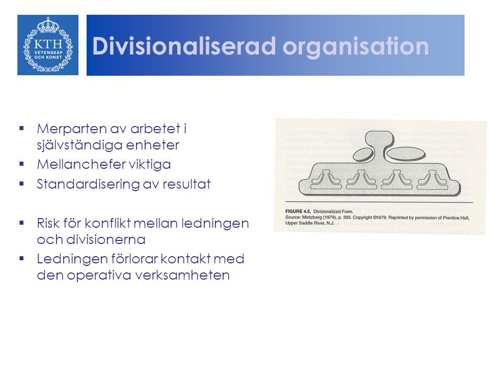 Divisionaliserad organisation