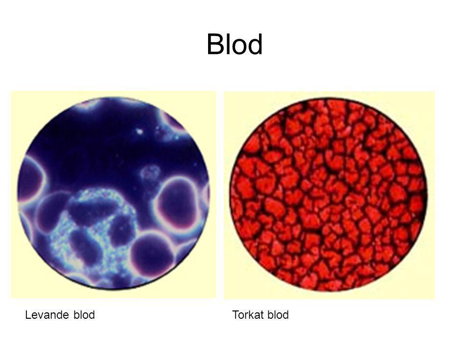 Blod Levande blod Torkat blod