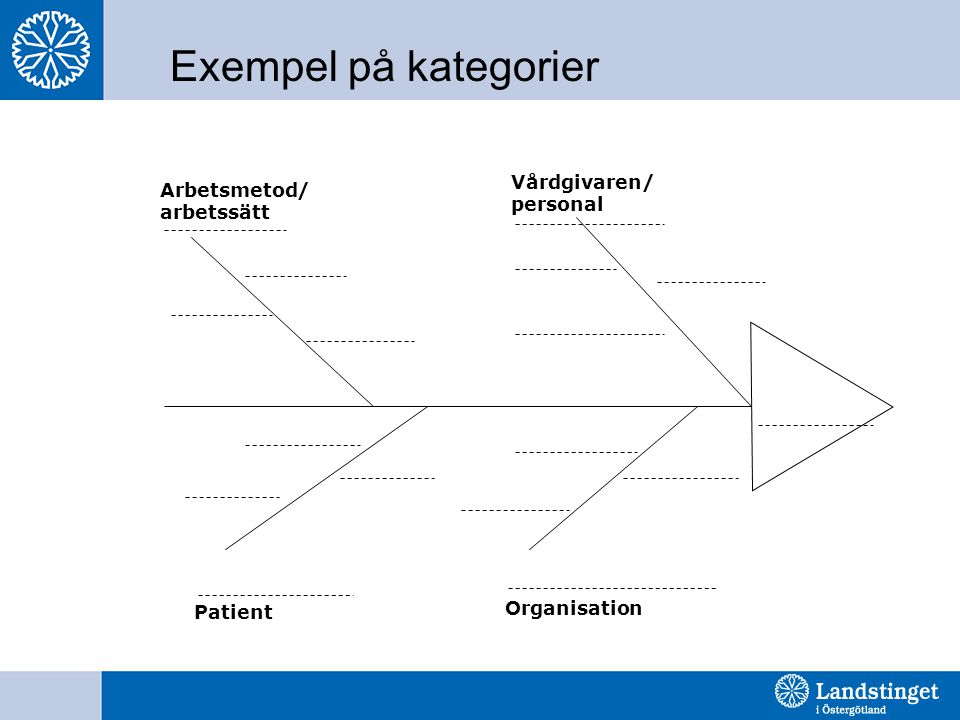 Exempel på kategorier Vårdgivaren/ personal Arbetsmetod/ arbetssätt