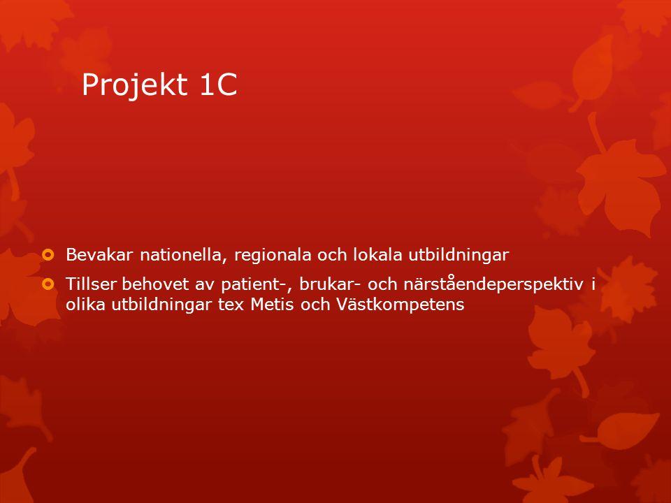 Projekt 1C Bevakar nationella, regionala och lokala utbildningar